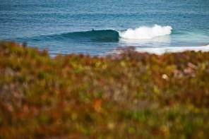 Aprovado plano de gestão da Reserva Mundial de Surf da Ericeira