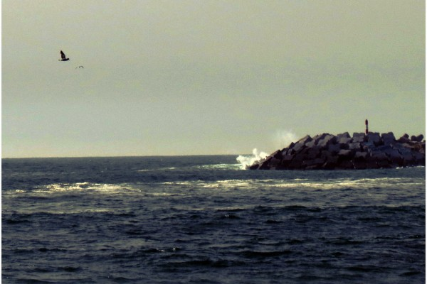 Praia dos Pescadores. - ph. ParkTV