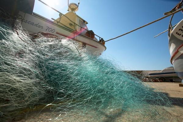 Pesca na Ericeira. - ph. DR