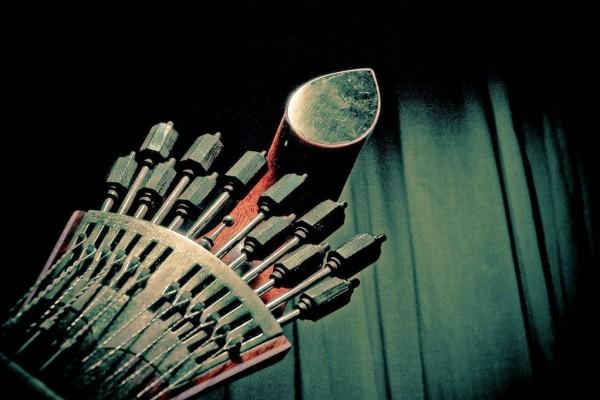 Guitarra Portuguesa. - ph. Feliciano Guimarães