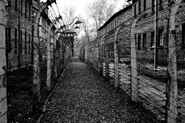 """O Que Foi O Holocausto"" - ph. James Ackerley"