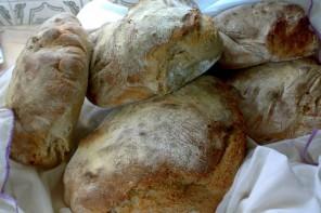 8ª edição do Festival do Pão vai durar 10 dias