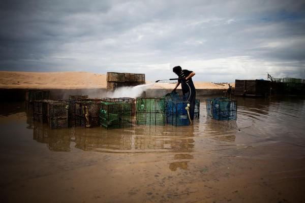 Limpeza covos. Pesca - ph. Márcio Barreira