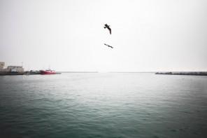 2º Encontro do Mar na Ericeira