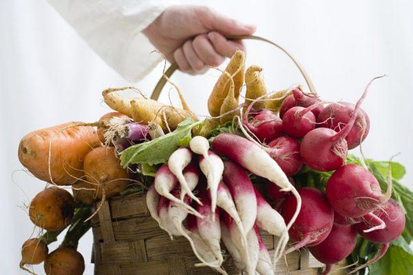 Agricultura Biológica - ph: DR