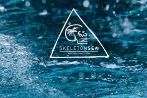 Skeleton Sea: the artists collective that wants to save the oceans