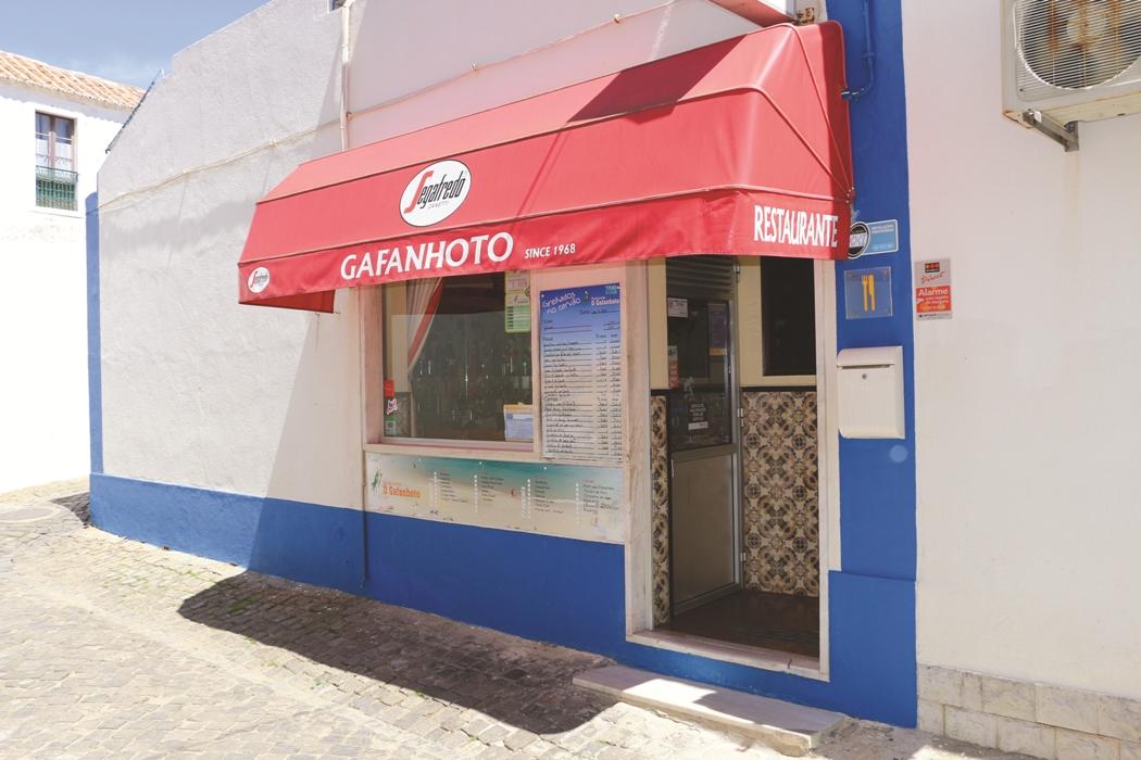 O Gafanhoto
