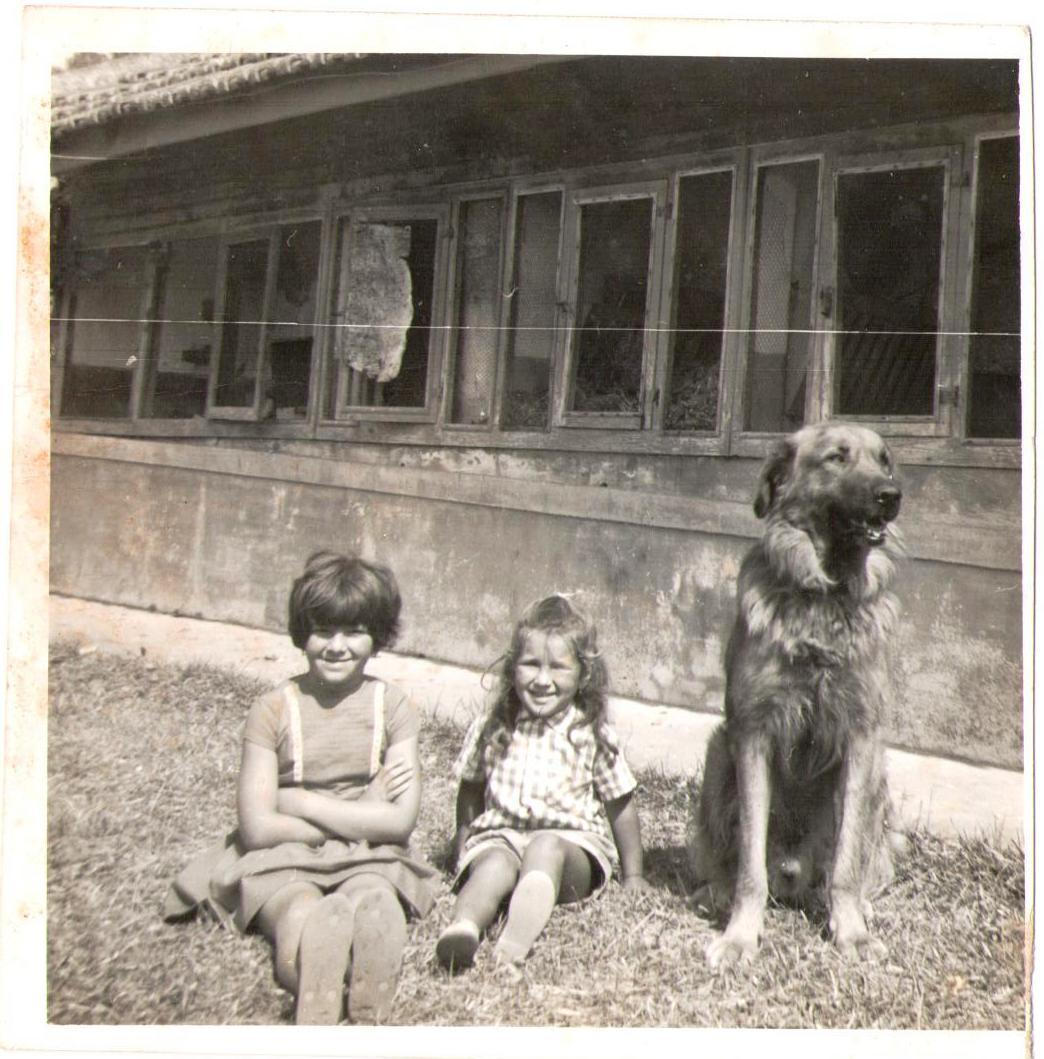 Teresa, a imã de Ana, Ana e Jack na quinta, junto às «casas dos coelhos.»
