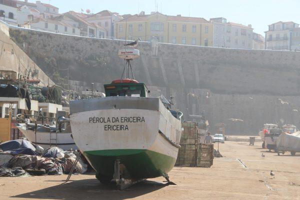 Barco Pérola da Ericeira - ph. Sónia Nunes