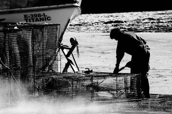 Barco Titanic Porto Pesca - Sérgio Oliveira