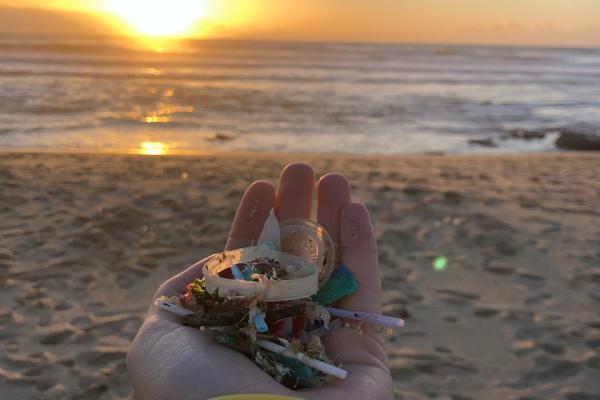 Limpeza de praia - ph. DR