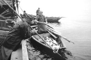 Francisco Esteves apresenta livro sobre a Pesca do Bacalhau