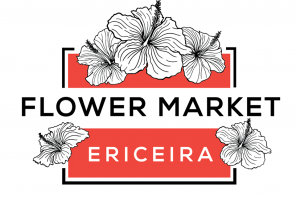 Compras de Verão no Flower Market