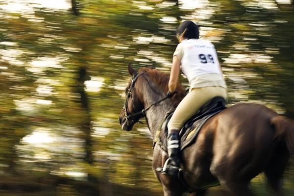 Equitação. - ph. Patrick Goossens