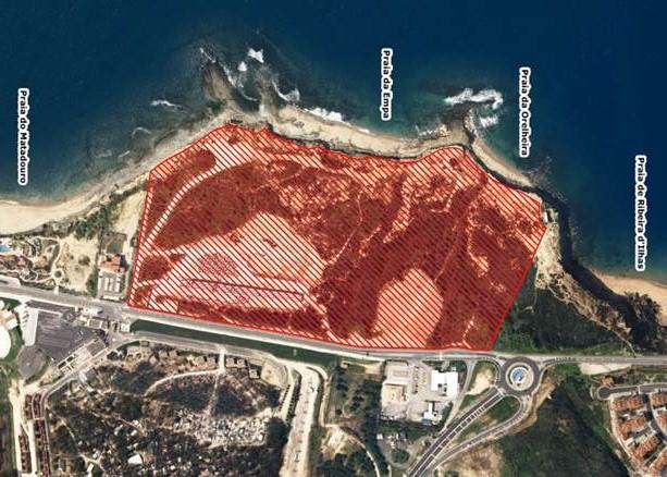 O terreno onde vai nascer o Parque Ecológico da Reserva - ph. DR