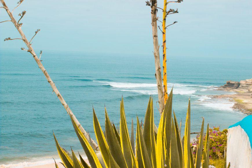 Praia Algodio - ph. Daniel Dist