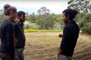 Universidade dos Valores promove Curso em Agrofloresta e Agricultura Sintrópica